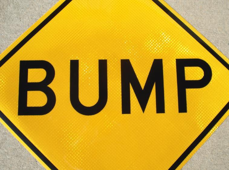 bump_sign_W8-1_large.jpg
