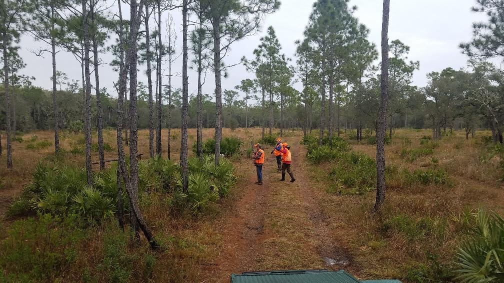 Quail hunt 1-26-19 Miles and Sam.jpg
