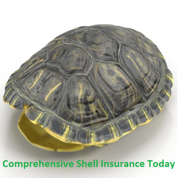 Shell Insurance.png