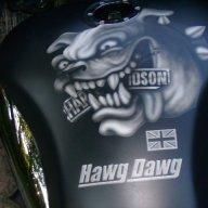 hawg dawg