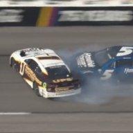 Turtle84